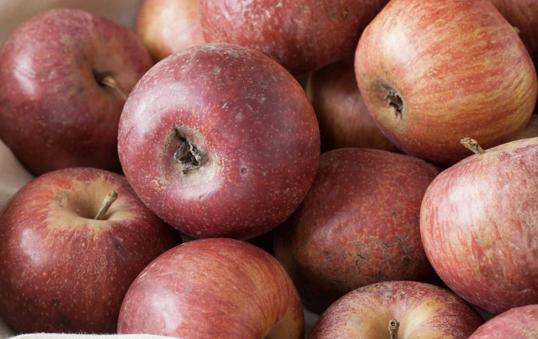 Una mela (annurca) al giorno toglie il medico di torno